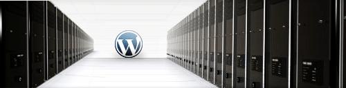 Wordpress Admin FTP